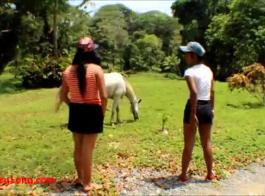xnxxحصان بنت كرتو